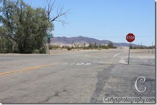 Mojave Desert-4