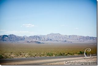 Mojave Desert-29