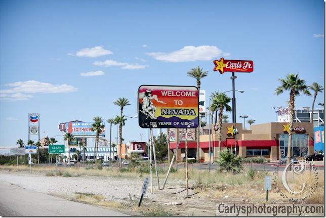 Mojave Desert-30
