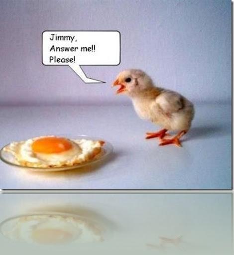 gay chicken joke gif