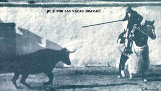El toro bravo LF Salcedo 002