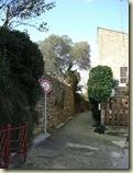 garden walk 1_1_1