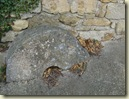 millstone_1_1