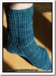 Castane Socks - leg