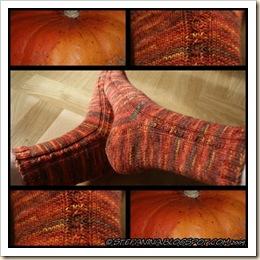 automne socks
