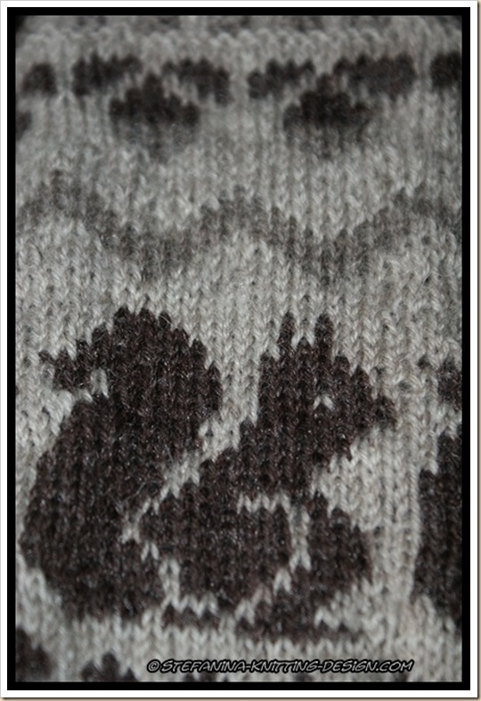 Ecureuil socks close-up