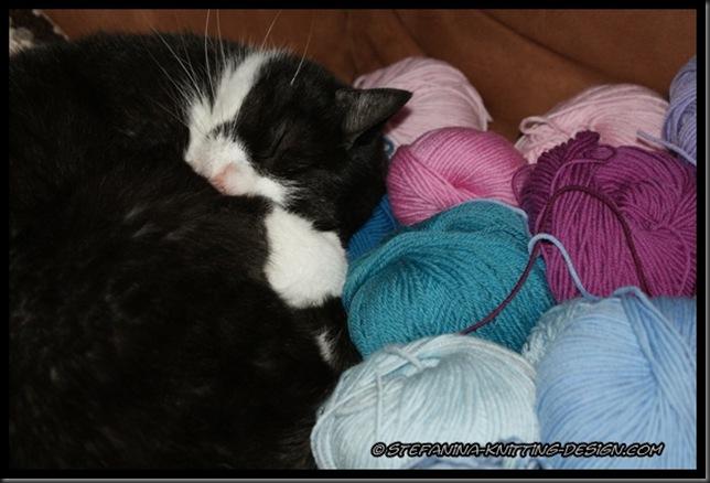 Crochet a rainbow - the cat yarn's choice