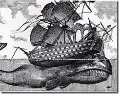 whale-sinks-ship