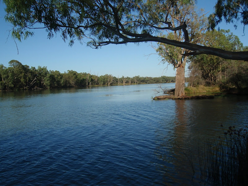 Murray Darling Junction