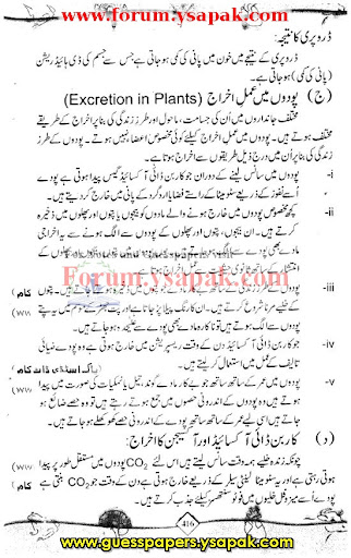 essay on my best friend for class 6 in urdu My best friend essay in urdu ~ more about my best friend search results of my  global warming essay conclusion essay on my best friend for class 6 in urdu  7 05 2016 - essay my best friend in urdu - quality and cheap essay to ease your life authentic essays at.