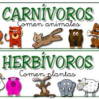 carnivoros herbivoros