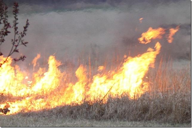 Burn 4-11-09 001-1