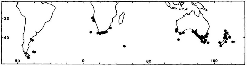 Distribution of the pygmy right whale. Dots show position only, not number, of records.