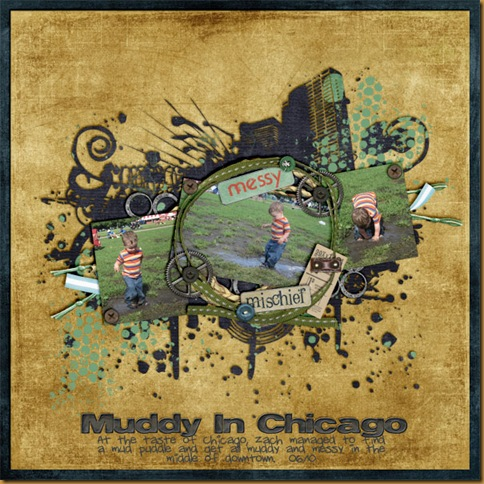 Muddy-In-Chicagosmall
