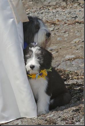 2007_Wedding_ProPics 026