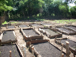 mudhouse mud house hotel anamaduwa puttalam sri lanka organic vegetable garden raised soil beds