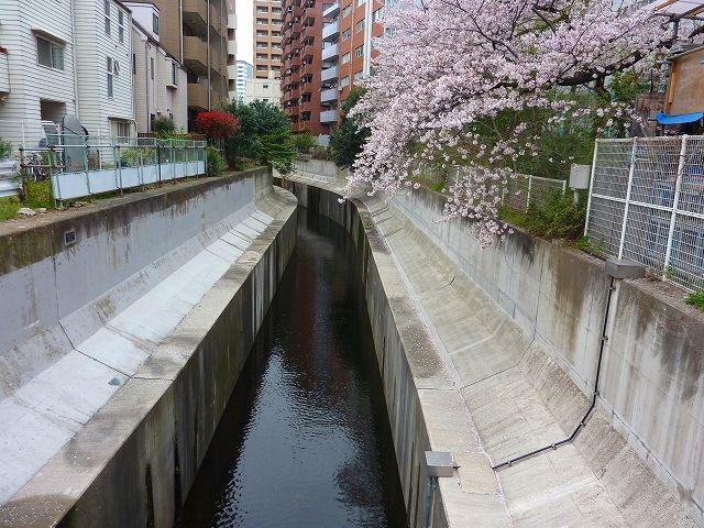 広尾水車のあった山下橋(水車橋)付近