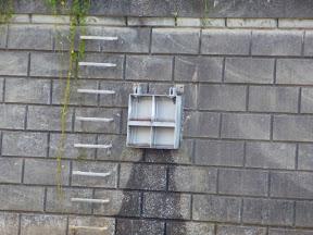 �A居木橋北詰上流