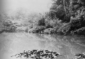 昭和6(1931)年のがま池(麻布鳥居坂警察署誌)