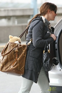 ashley-greene-travel-teddy-05