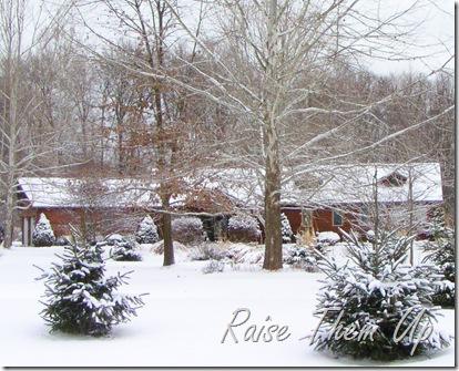 Winter at RTU
