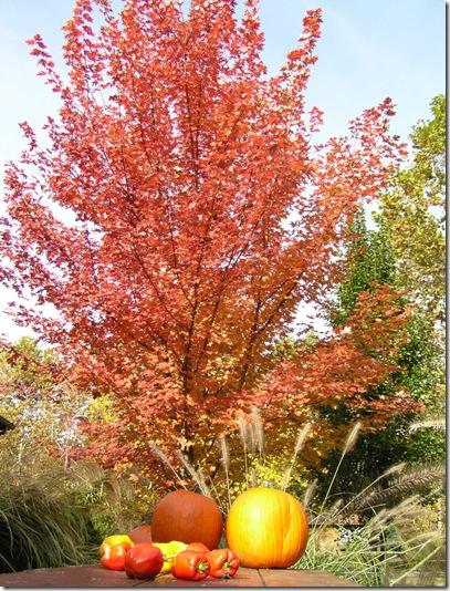 Fall Picnic Table