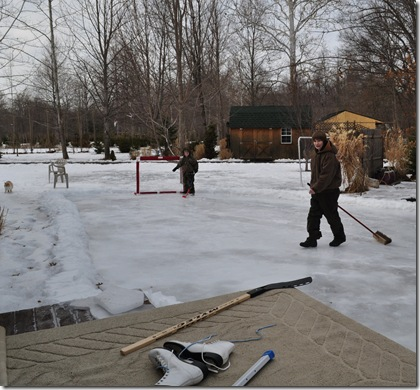 backyard hockey 2