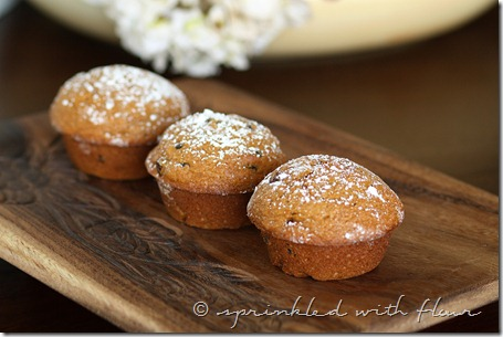 Pumpkin-Applesauce-Muffins-1-for-web