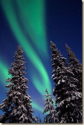 'Christmas Aurora' photograph by © Sauli Koski