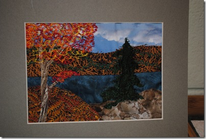 Brant Heritage Quilt Show 005