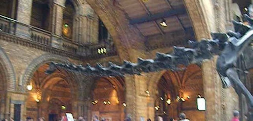 Dinosaurfront