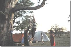 campamento 251