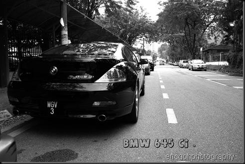 DPP_10273