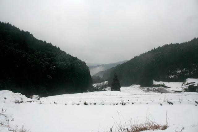 2011-01-05 038.JPG