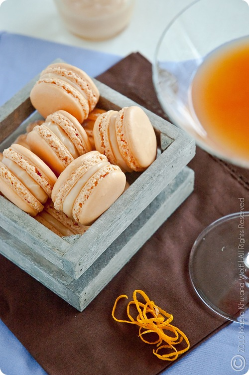 Campari Orange Grapefruit Macarons (0003) by MeetaK