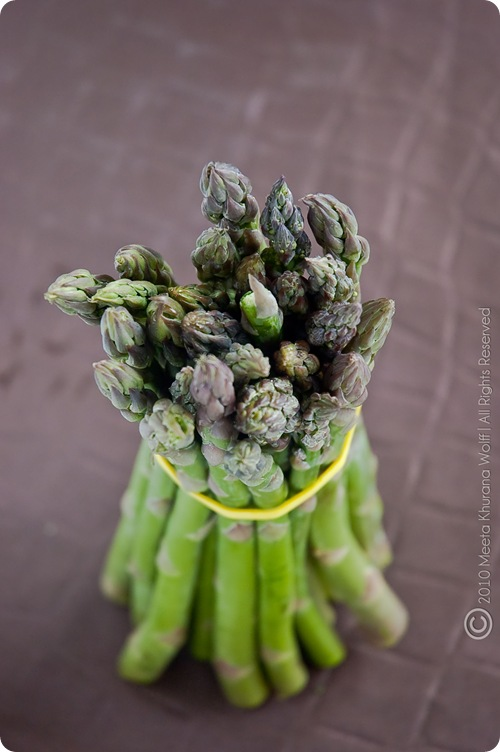 Asparagus 2010 (0010) by MeetaK