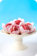 Macarons_Cake_Stand_Meeta300