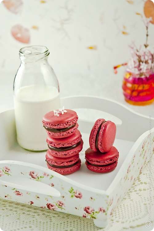 Raspberry Chcocolate Tahini Macarons (0004) By MeetaK