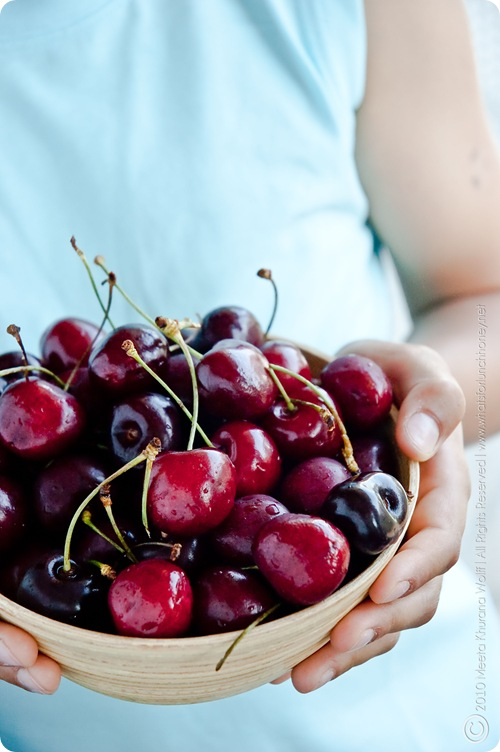 Cherries 2010 (0003) by MeetaK