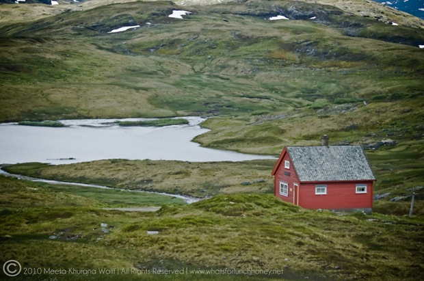 Norway2010_0249-CR