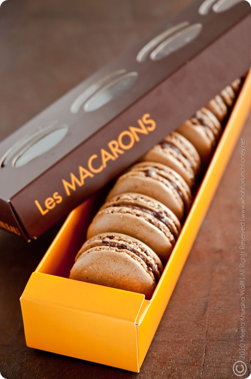 Rooibos Chocolate Chai and Sweet Spicy Chocolate Cinnamon Macarons (0022) by MeetaK