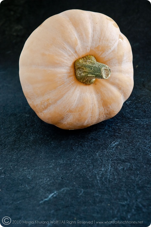 Pumpkin 092010 (0049) by Meeta K. Wolff