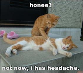 honee-not-now-i-has-headache