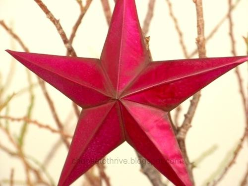 [star.51[4].jpg]