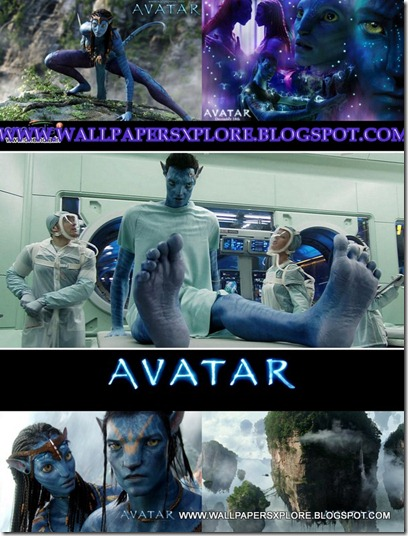 AVATAR MOVIE BEST WALLPAPERS {H33T} (www.wallpapersxplore.blogspot-1