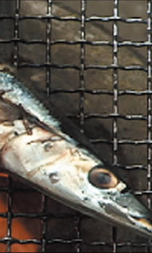 Memorable images Burn a Saury