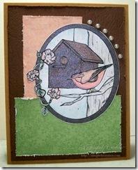 Birdhouse Framed