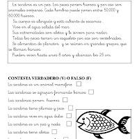 la sardina1.jpg