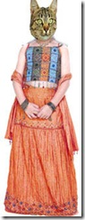 rampyari-new-dress-7 copy1