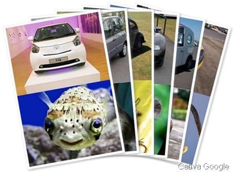 Carros e Animais Por Cativa Google